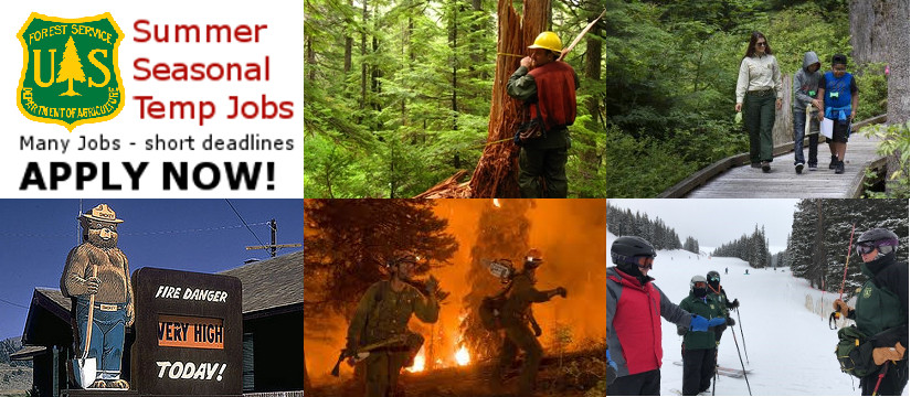 Image result for 2019 temp hiring event us forest service